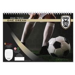 Diakakis imports ΠΑΟΚ FC Μπλοκ Ζωγραφικής 40 Φύλλα Με Αυτοκόλλητα - 2 Σχέδια 000130944 5205698421006