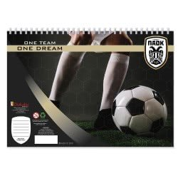 Diakakis imports PAOK FC Painting Block With Stickers - 2 Designs 000130944 5205698421006