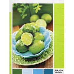Clementoni Puzzle 1000 Pantone Lime Punch 1260-39492 8005125394920