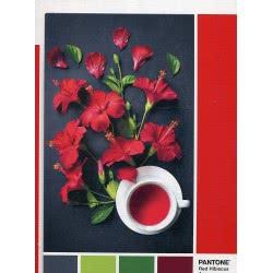 Clementoni Puzzle 1000 Pantone Hibiscus Red 1260-39494 8005125394944