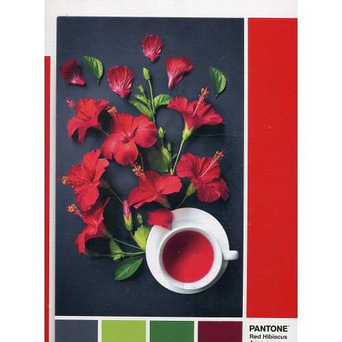 Clementoni Παζλ 1000 Pantone Hibiscus Red 1260-39494 8005125394944