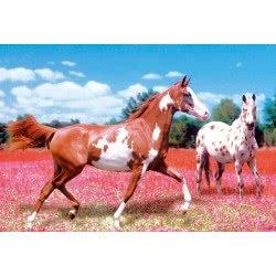 Clementoni Παζλ 1000  H.Q. Αλογα Στο Λιβάδι 1220-39016 8005125390168