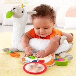 Fisher-Price Grow With Me Tummy Time FXC36 887961687552