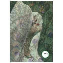 shape notebooks Τετράδιο Σπιράλ 1 Θέματος B5 Animal 17X24 Cm - 5 Χρώματα AN.PRINTB51 5200399803960