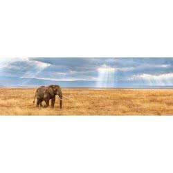 Clementoni Puzzle 1000Τεμ. Panorama Lost Panorama 1220-39484 8005125394845