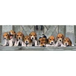 Clementoni Pazzle 1000 H.Q. PANORAMA Beagles 1220-39435 8005125394357
