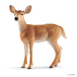 Schleich Wild Life Ελαφίνα Με Λευκή Ουρά SC14819 4055744029615