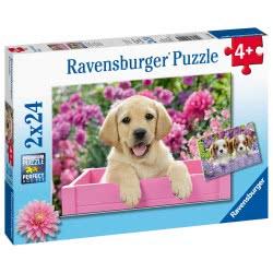 Ravensburger Παζλ 2X24 Τεμ. Κουτάβια 05029 4005556050291