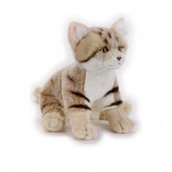 National Geographic Sand Cat Ngs Cats Plush Toy Multicoloured, 8004332706717 770671 8004332706717