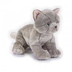 National Geographic British Shorthair Kitten Ngs Cats Cuddly Toy, Multi-Colour, 8004332706748 770674 8004332706748