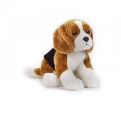 National Geographic Kids Beagle Dog
