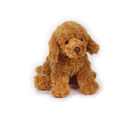 National Geographic Kids Australian Cobber Dog