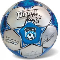 star Μπάλα Ποδοσφαίρου Legendary Champions Silv 35/706 5202522007061