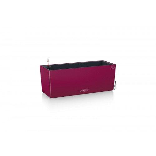 Lechusa LECHUZA ΑΥΤΟΠΟΤΙΖΟΜΕΝΗ ΓΛΑΣΤΡΑ BALCONERA Color 50 purple garnet All-in-One Set 15675 4008789156754