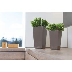 Lechusa LECHUZA ΑΥΤΟΠΟΤΙΖΟΜΕΝΗ ΓΛΑΣΤΡΑ MINI-CUBI shiny taupe All-in-One Set 18119 4008789181190