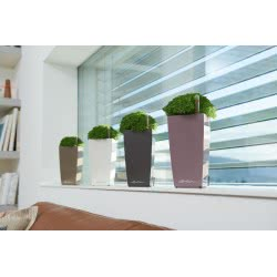 Lechusa LECHUZA ΑΥΤΟΠΟΤΙΖΟΜΕΝΗ ΓΛΑΣΤΡΑ MAXI-CUBI pastel violet high-gloss All-in-One Set 18154 4008789181541