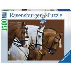 Ravensburger Παζλ 1500Τεμ. Κομψά Άλογα 16339 4005556163397