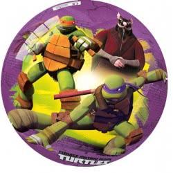 star Μπάλα Ninja Turtles 23Cm 30-2703 5202522127035
