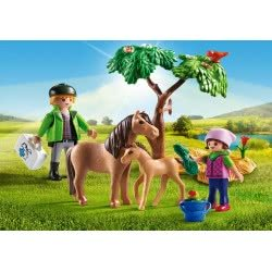 Playmobil Vet with Pony and Foal 6949 4008789069498