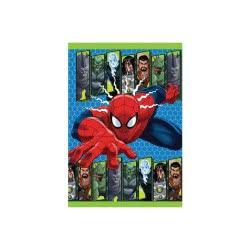 Diakakis imports Τετράδιο Καρφίτσα 17X24 40Φ Spiderman - 2 Σχέδια 500828 5205698220272