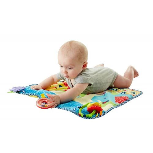 Fisher-Price On-The-Go Activity Throw Toy DYW52 887961424003