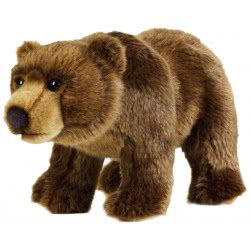 National Geographic Αρκούδα Λούτρινο, Μεσαίο 770740 8004332707400