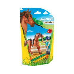 Playmobil Horse Therapist 9259 4008789092595
