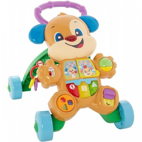 Fisher-Price Fisher Price Εκπαιδευτική στράτα σκυλάκι Smart stages FTC66 887961640908