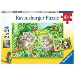 Ravensburger Παζλ 2x24 τεμ. Κοάλα και Πάντα 07820 4005556078202