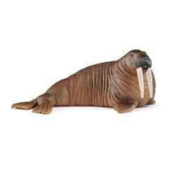 Schleich Wild Life Walrus 14803 4055744019784