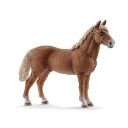 Schleich Horse Club Ίππος Morgan 13869 4055744020292
