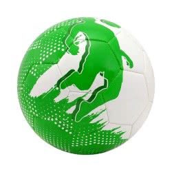 As company Soccer Ball Paiktaras - Green 1540-15955 5203068159559