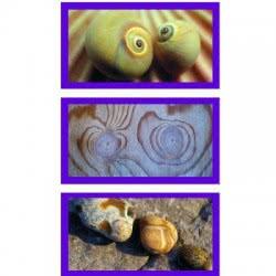 Ravensburger Παζλ 3X500 Φυσικές Εντυπώσεις Στην Άμμο 05-16286 4005556162864