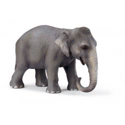 Schleich Ελέφαντας Θηλυκός Ινδικός SC14344 4005086143449