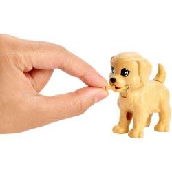 Mattel Η Barbie και τα Σκυλάκια της FXH08 887961691290